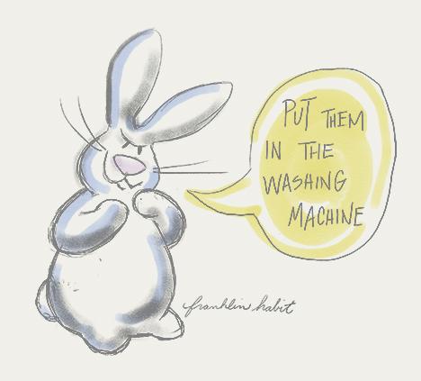 bunny-wash